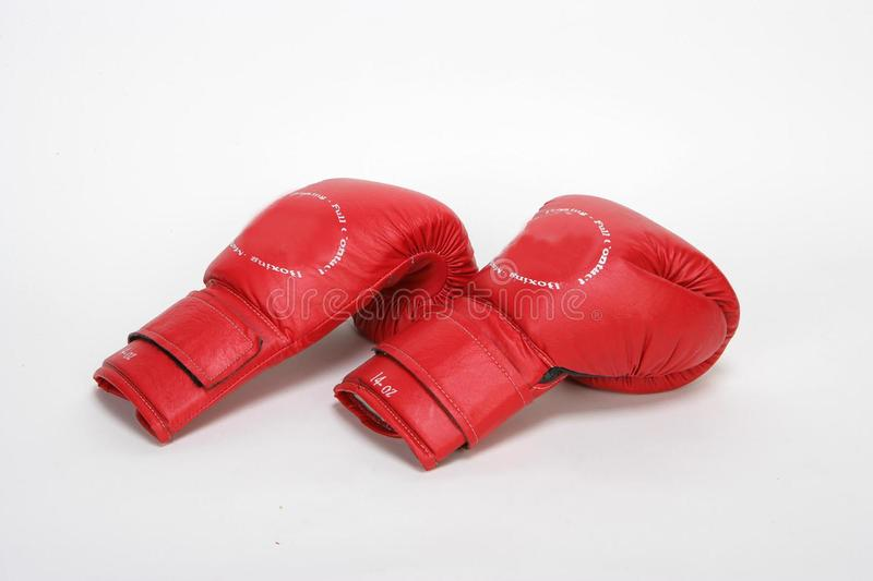 Box Gloves royalty free stock image