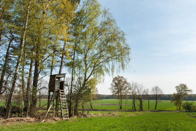 Download Box Stand At The Edge Of A Forest Stock Photo - Image of height, farm: 30393194