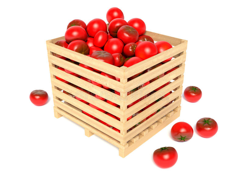 Box with tomatoes royalty free illustration
