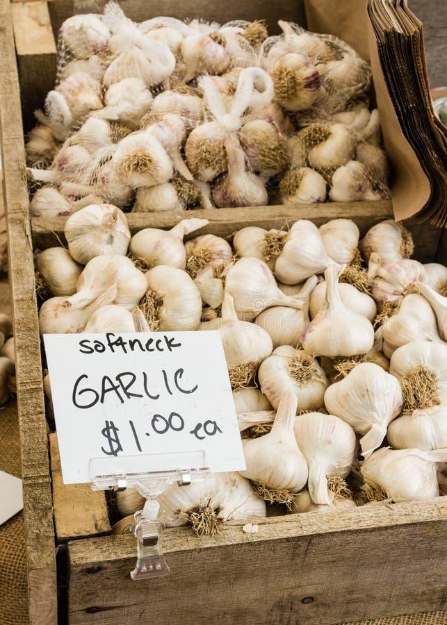 Box of white garlic at the market stock photography