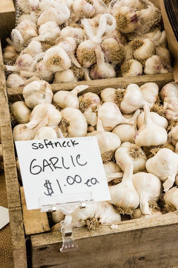 Box of white garlic at the market stock photo