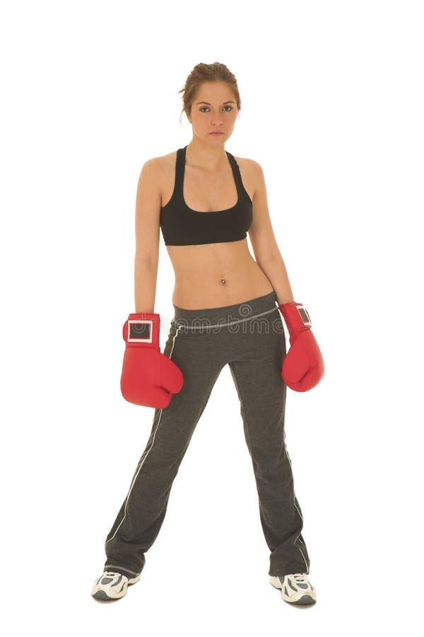 boxare 15 fotografering för bildbyråer