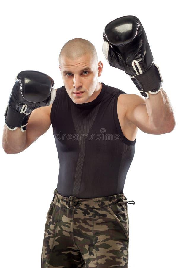 Boxare kämpe på isolerat arkivfoto