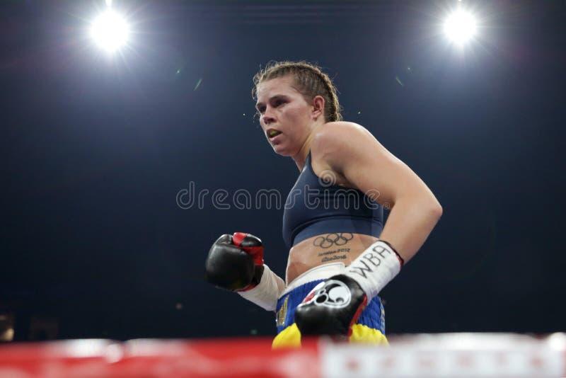 Boxare Savannah Marshall royaltyfri bild
