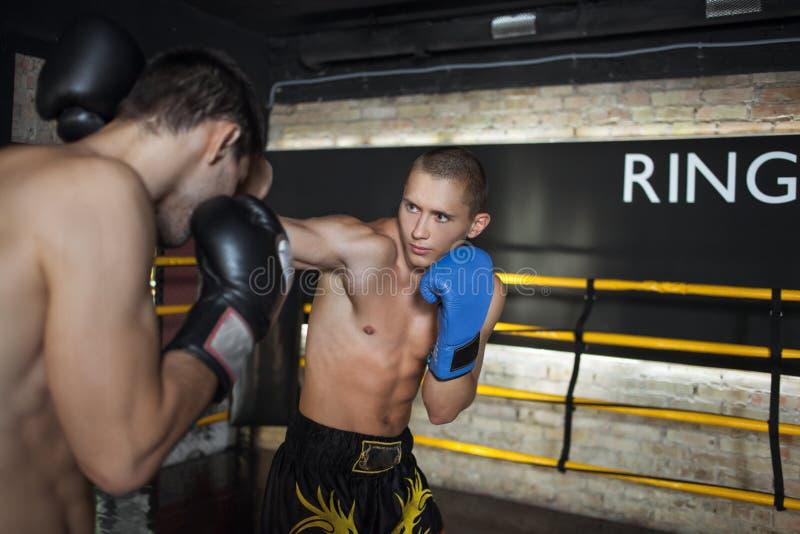 Boxare som gör att munhuggas arkivbilder