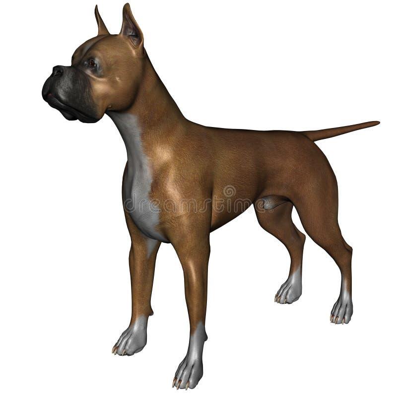 boxarehund stock illustrationer