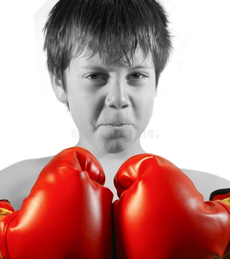 boxarepojke fotografering för bildbyråer