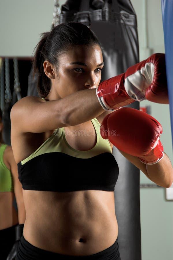 boxareutbildning arkivfoton