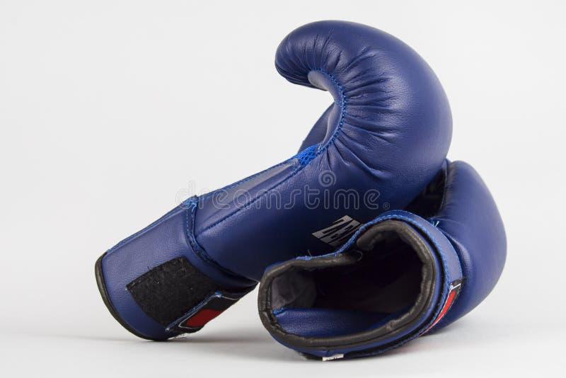 Boxas blåa handskar på en grå bakgrund Konditionstilleben på en vit bakgrund arkivbild