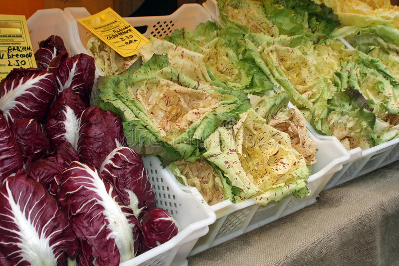 Boxas med nya säsongsbetonade grönsaker på rea från grönsakshandlare royaltyfria foton