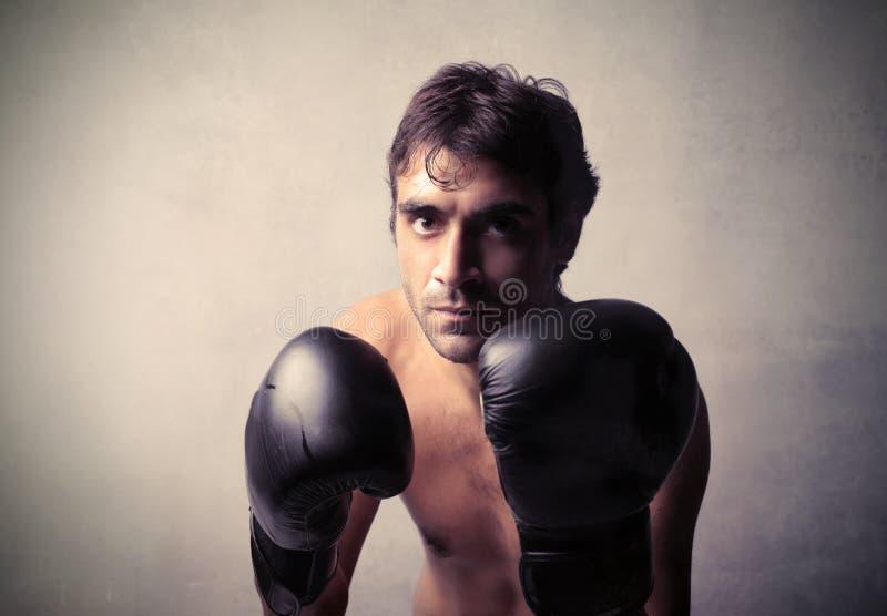 Download Boxe match stock photo. Image of anger, pugilist, violence - 24768620