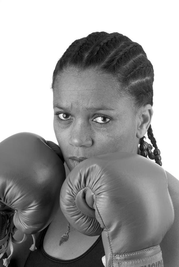 Boxeador imagenes de archivo