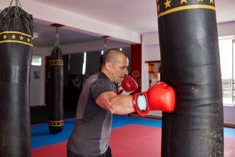 Boxeador con el bolso pesado fotografía de archivo