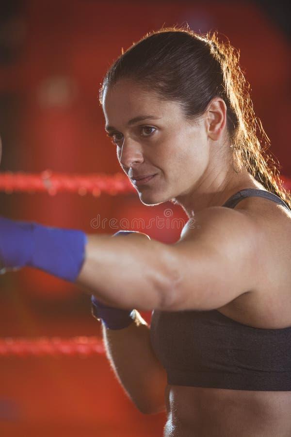 Boxeador de sexo femenino que practica en el anillo imágenes de archivo libres de regalías