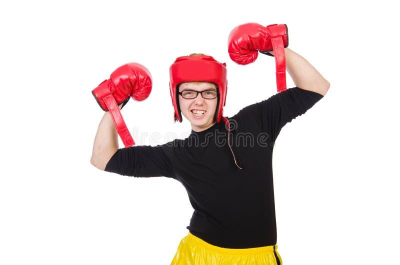 Download Boxeador divertido aislado foto de archivo. Imagen de ejercicio - 41915592