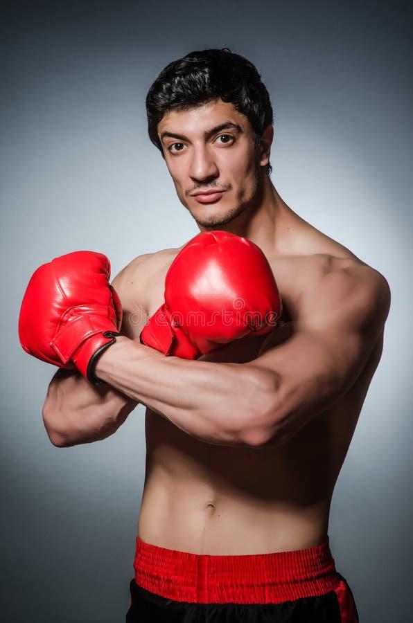 Download Boxeador muscular imagen de archivo. Imagen de muscular - 41913017