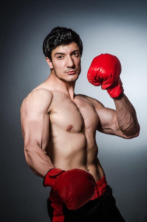 Boxeador muscular foto de archivo libre de regalías