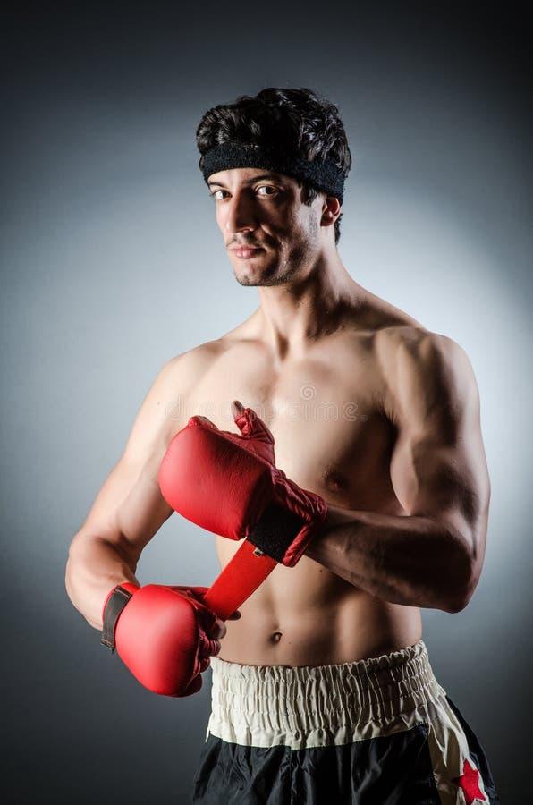 Boxeador muscular fotografía de archivo libre de regalías