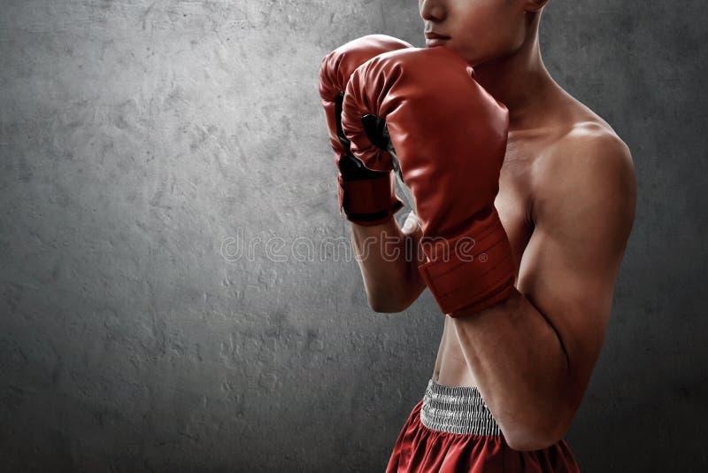 Boxeador muscular fuerte en fondos de la pared imagenes de archivo