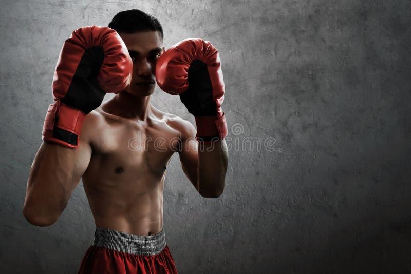 Boxeador muscular fuerte en fondos de la pared imagen de archivo libre de regalías