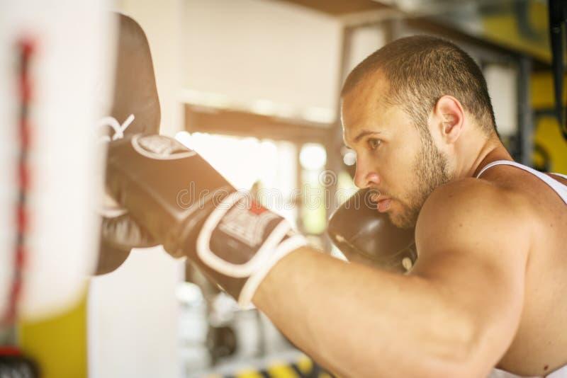 Boxeador que golpea el guante de su compañero de entrenamiento imagen de archivo libre de regalías