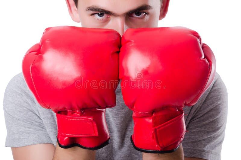 Boxeador que se prepara para el torneo aislado fotografía de archivo libre de regalías