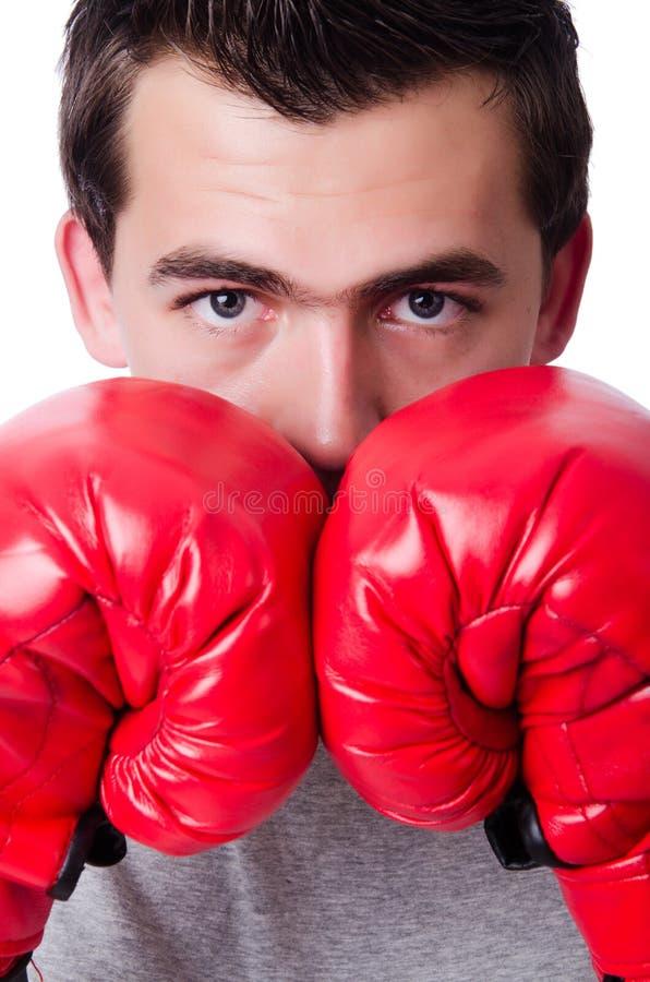Boxeador que se prepara para el torneo aislado imágenes de archivo libres de regalías