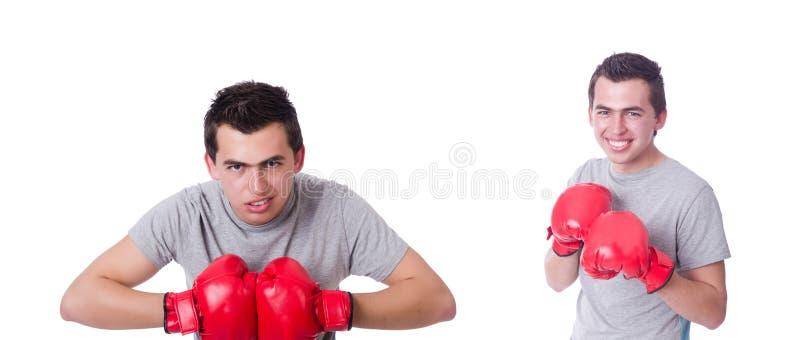 Boxeador que se prepara para el torneo aislado en blanco foto de archivo