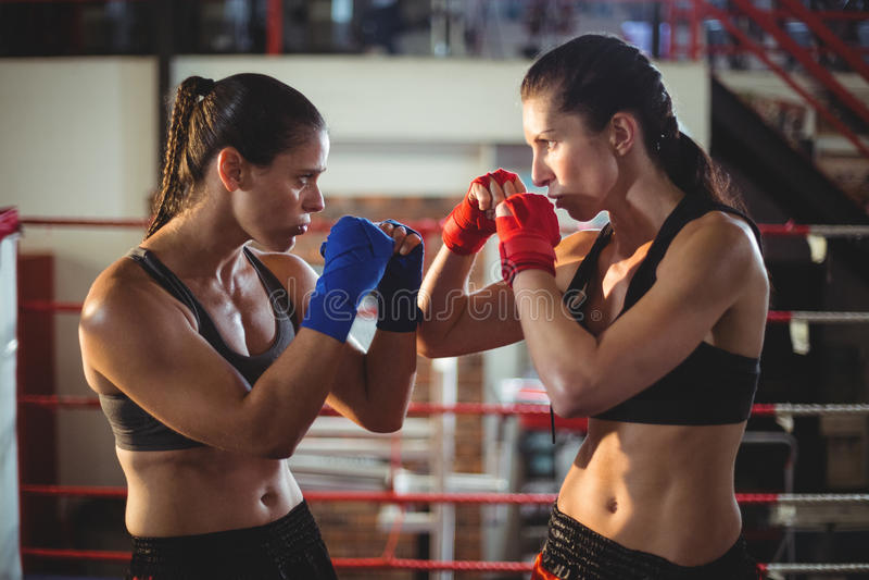 Boxeadores de sexo femenino que luchan en ring de boxeo fotos de archivo