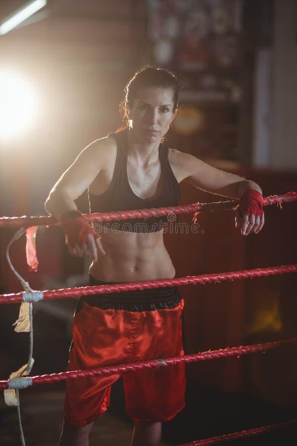 Boxeadores de sexo femenino que se colocan en ring de boxeo fotos de archivo
