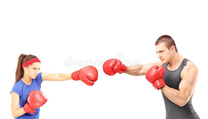 Boxeadores de sexo femenino y de sexo masculino con los guantes de boxeo durante un partido fotos de archivo