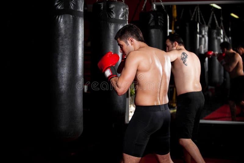 Boxeadores de sexo masculino que entrenan en un gimnasio imágenes de archivo libres de regalías