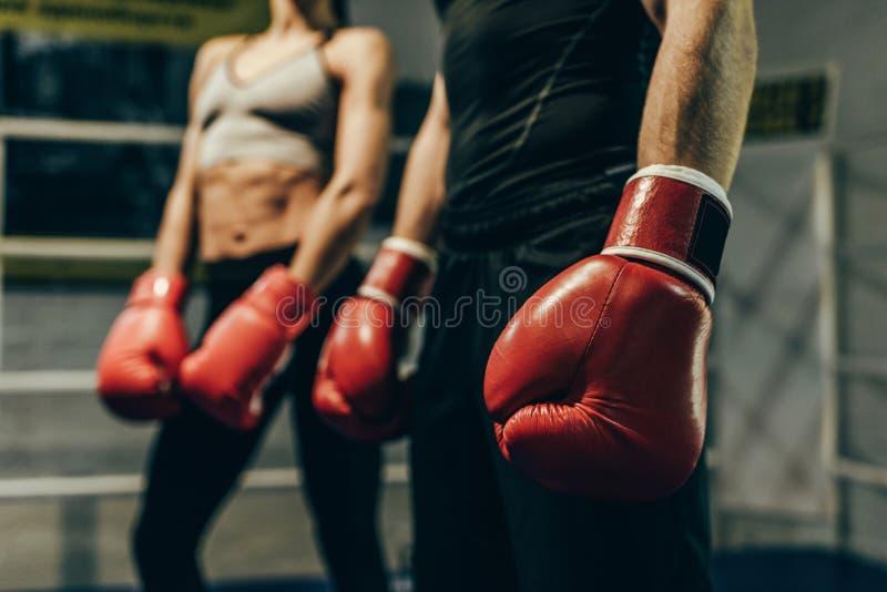 Boxeadores en guantes de boxeo foto de archivo