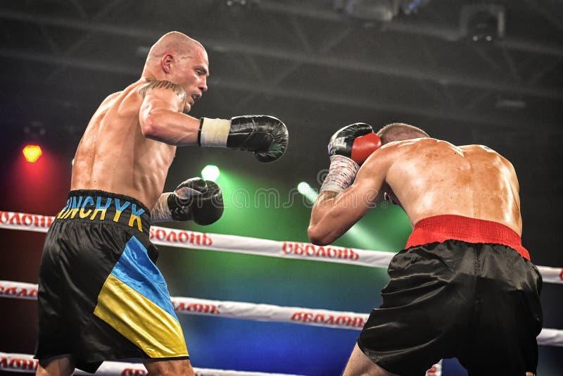Boxeadores Ismael Garcia y Denys Berinchyk en el anillo fotografía de archivo libre de regalías