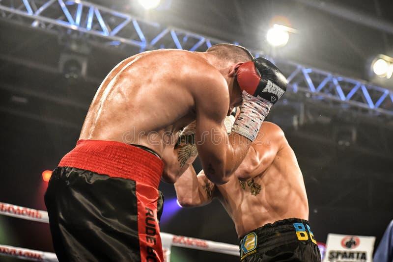 Boxeadores Ismael Garcia y Denys Berinchyk en el anillo foto de archivo