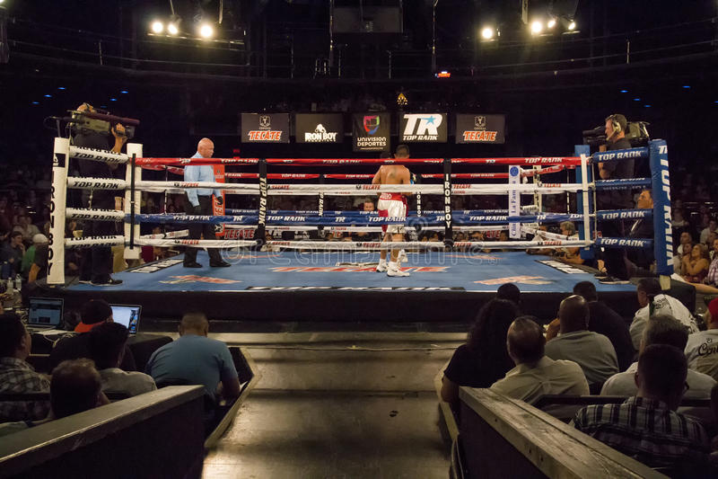 Boxeadores profesionales en Matchup imagen de archivo libre de regalías