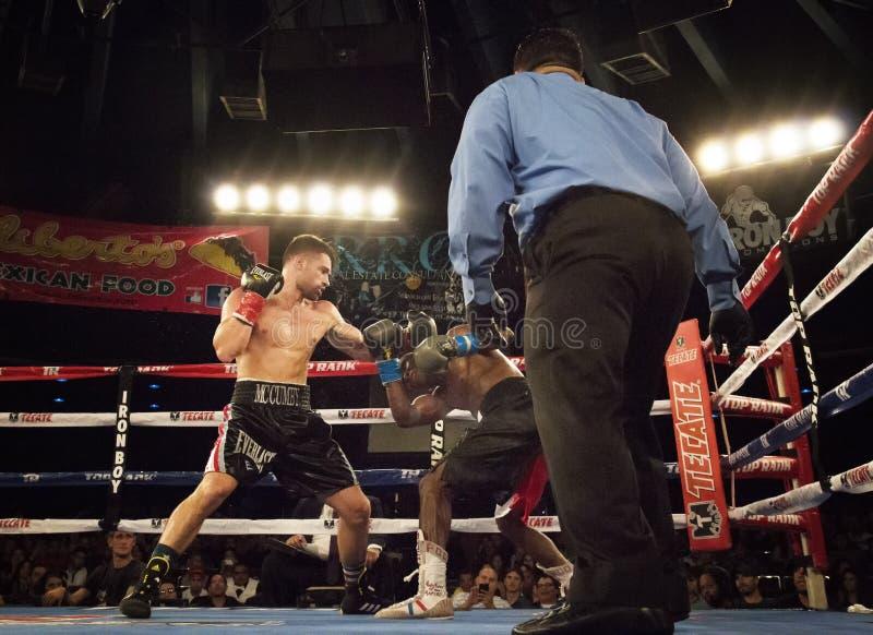 Boxeadores profesionales en Matchup fotografía de archivo