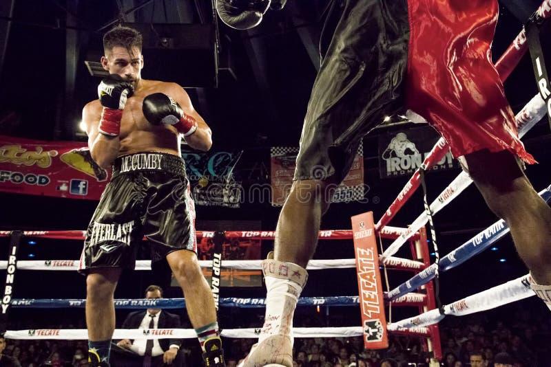 Boxeadores profesionales en Matchup imagen de archivo