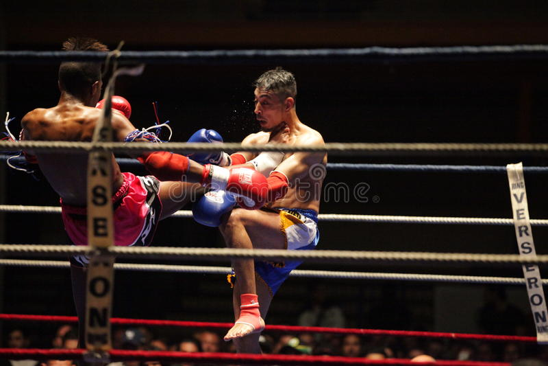 Boxeadores tailandeses en el anillo imagenes de archivo
