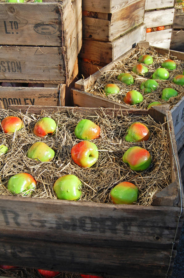 Boxed Apples Royalty Free Stock Photography