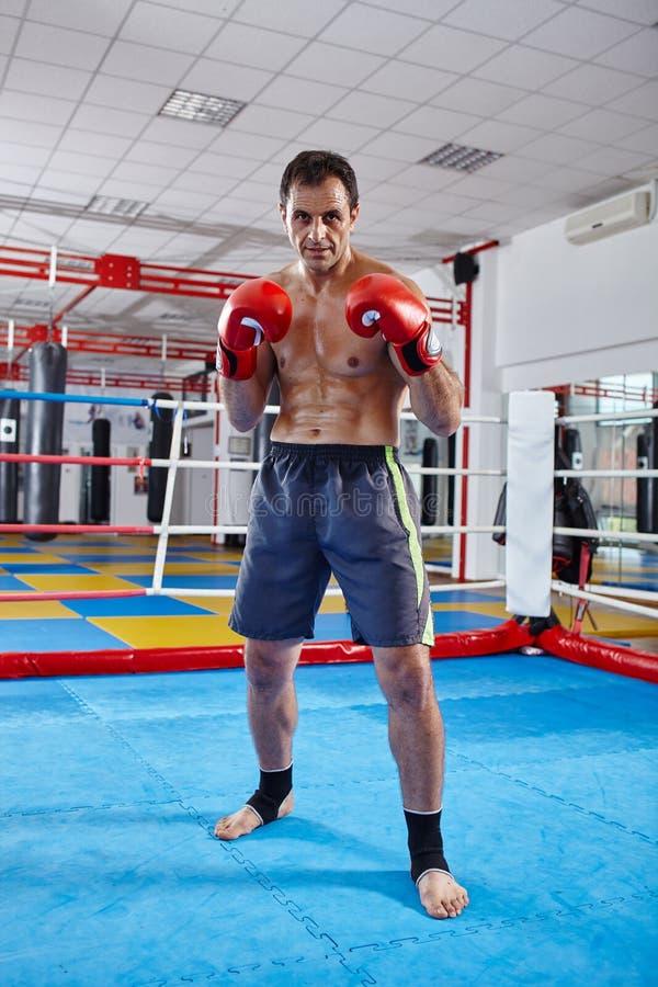 Boxeo de la sombra del combatiente de Kickbox en el anillo imagenes de archivo