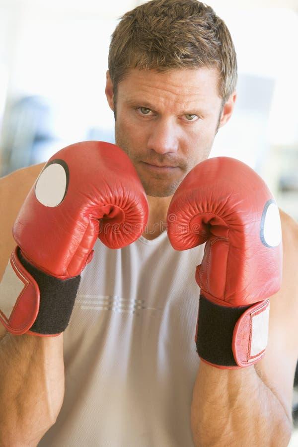 Boxeo del hombre en la gimnasia fotografía de archivo libre de regalías