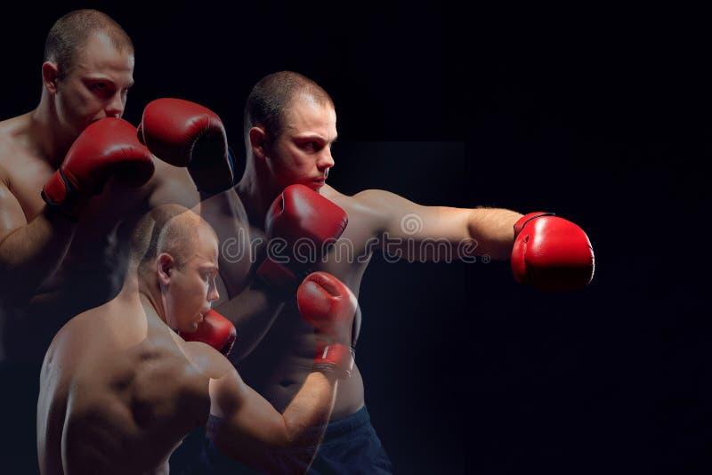 Boxeo joven del boxeador fotografía de archivo libre de regalías