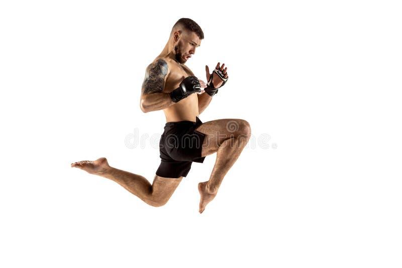Boxeo profesional del combatiente aislado en el fondo blanco del estudio fotografía de archivo