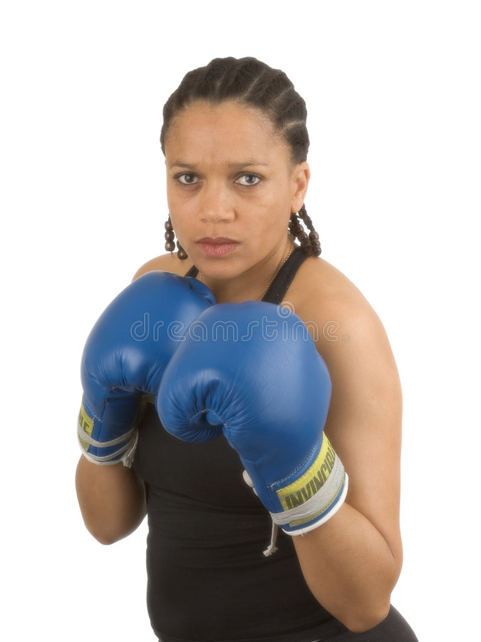Boxer stockfotografie