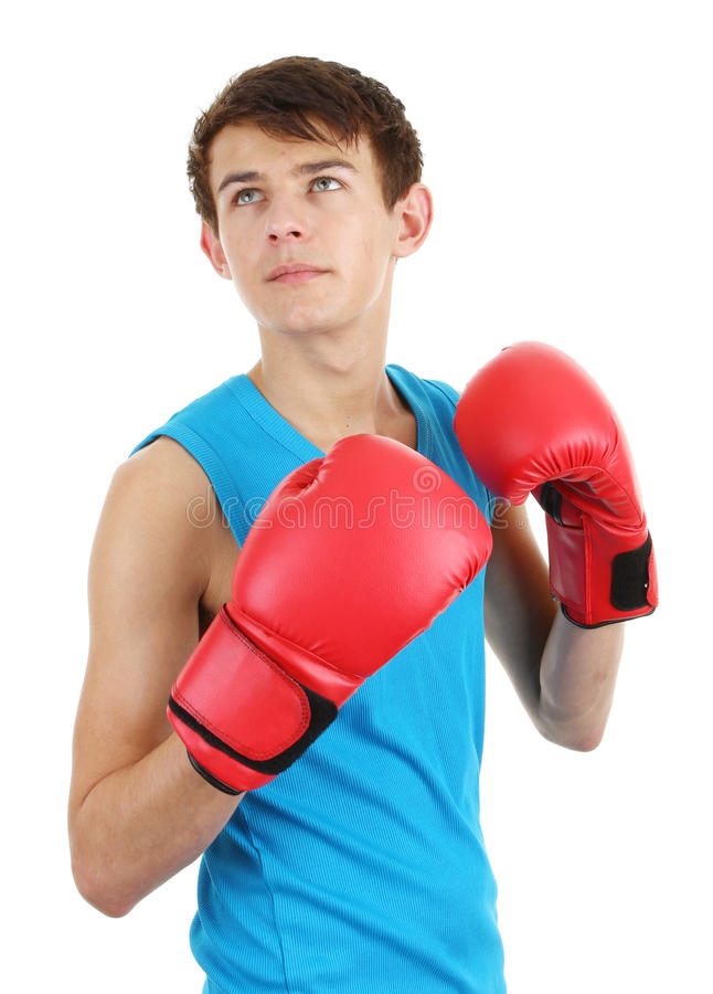 Download Boxer Stock Photos - Image: 22999863