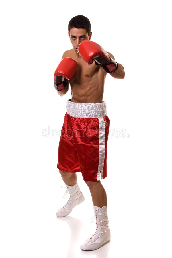 Boxer. In red trunks. Studio shot over white royalty free stock photos