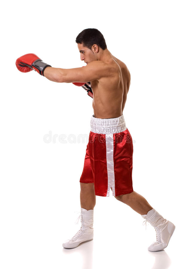 Boxer. In red trunks. Studio shot over white royalty free stock images