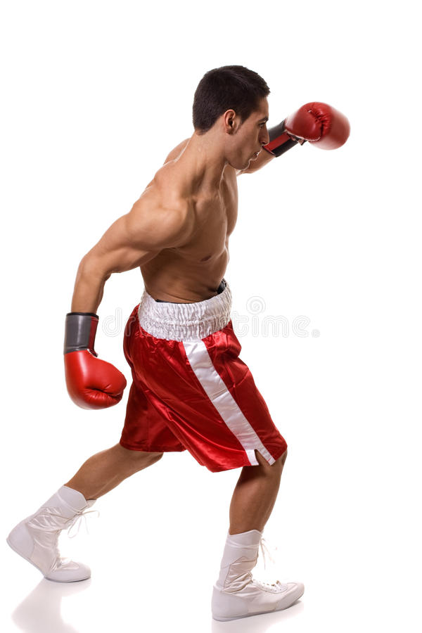 Boxer. In red trunks. Studio shot over white stock photography