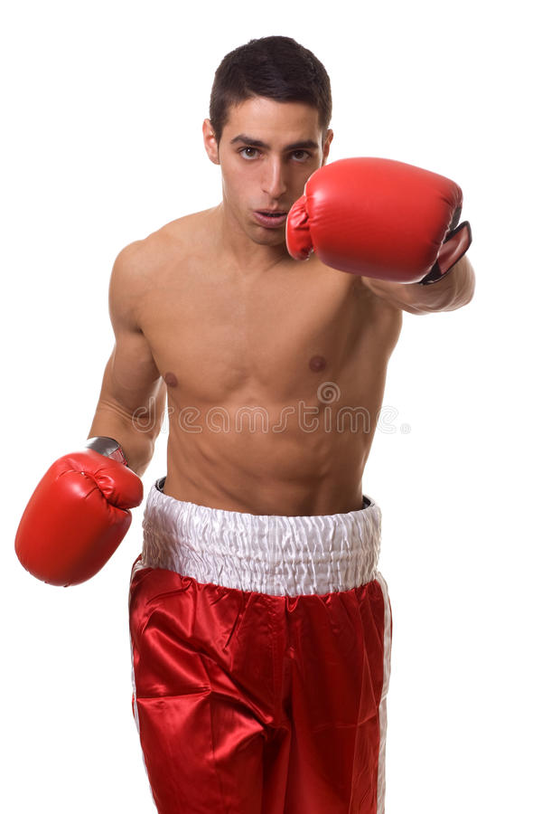 Boxer. In red trunks. Studio shot over white royalty free stock photography